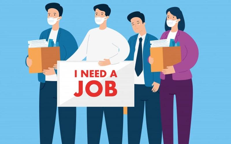Những công việc trong thời gian thất nghiệp