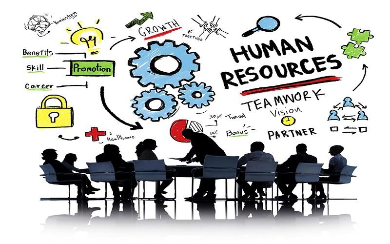 Tổng hợp nghiệp vụ của chuyên viên HR cần phải có